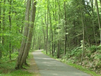 https://www.mwvrecpath.org/uploads/images/Home_Columns_400x300/Path with trees 400.jpg
